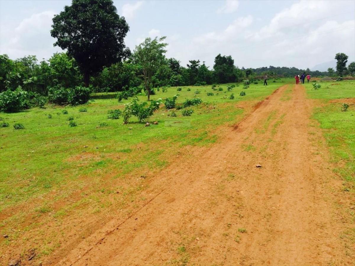 Land for Sale In Kalwan