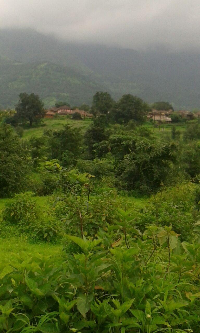 Kankavli at Nandgaon