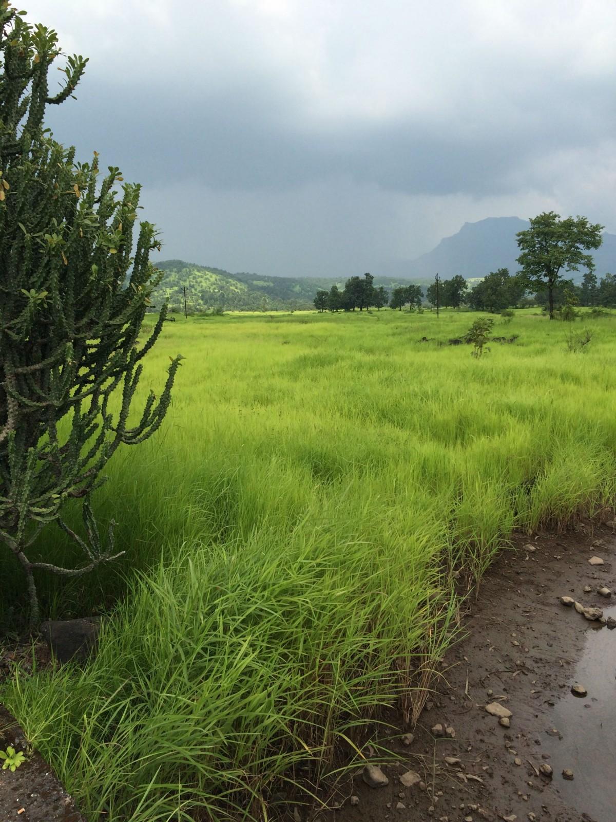 Kudal at Nandgaon