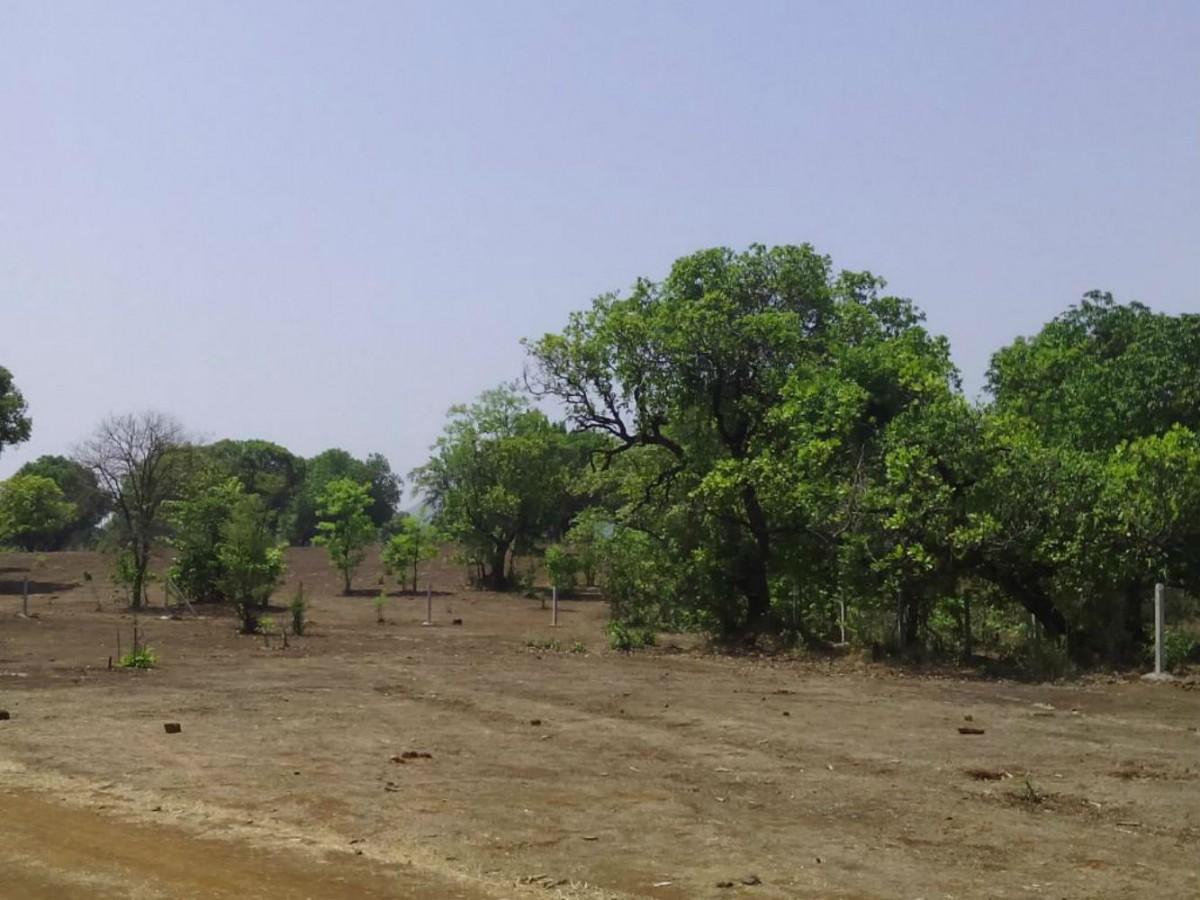 Maan at Shevari