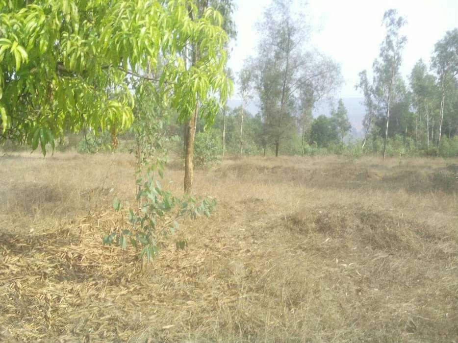 Agricultural Land 10 Acres For Sale At Jarag Nagar-Kolhapur