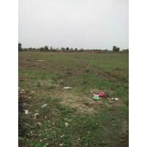 10 Acers Agricultural Land For Sale In Amravati Mahanagar-Maharashtra